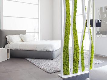 Ideas with moss for your interior